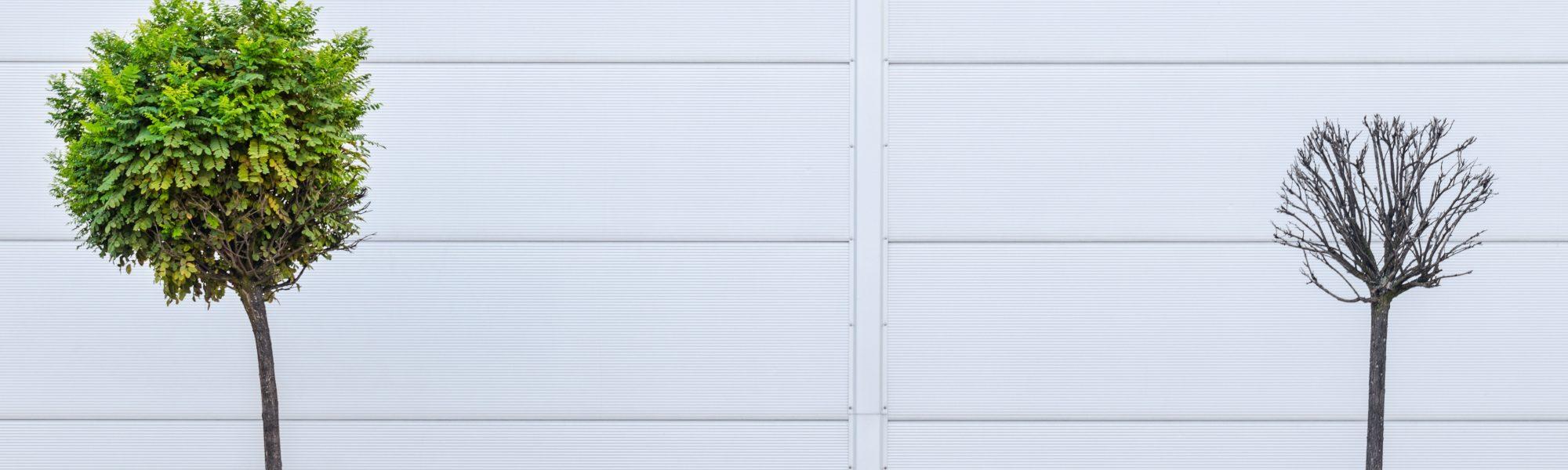 pawel-czerwinski-789323-unsplash